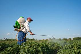 Pulverisateur agricole ft br
